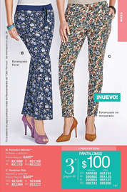 Campaña 6 Fashion and Home