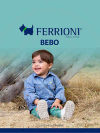 Ferrioni bebo